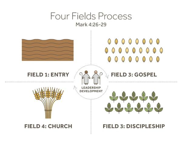 4Fields Graphic